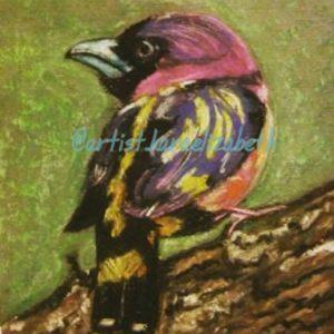 Bird#3